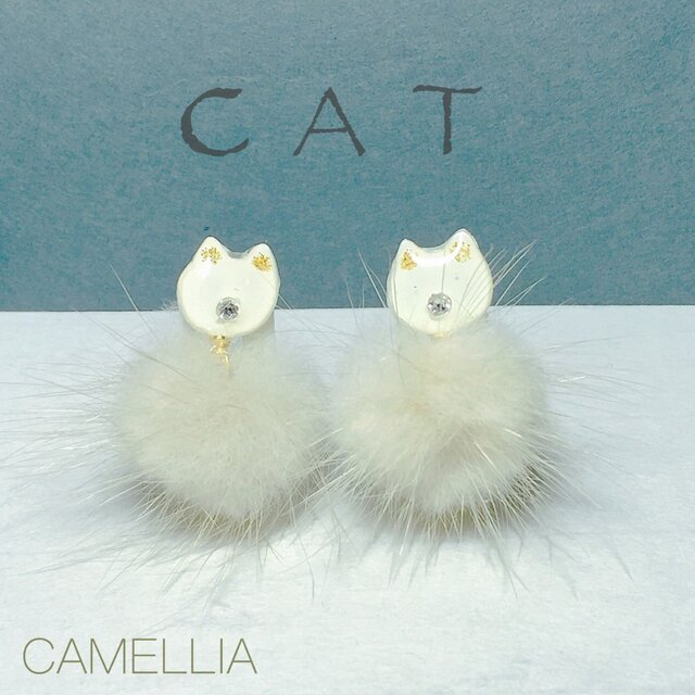 White Catの画像1枚目