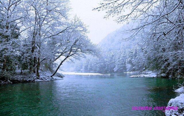白い季節の画像1枚目