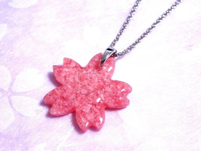 桜貝のネックレス・桜型の画像1枚目