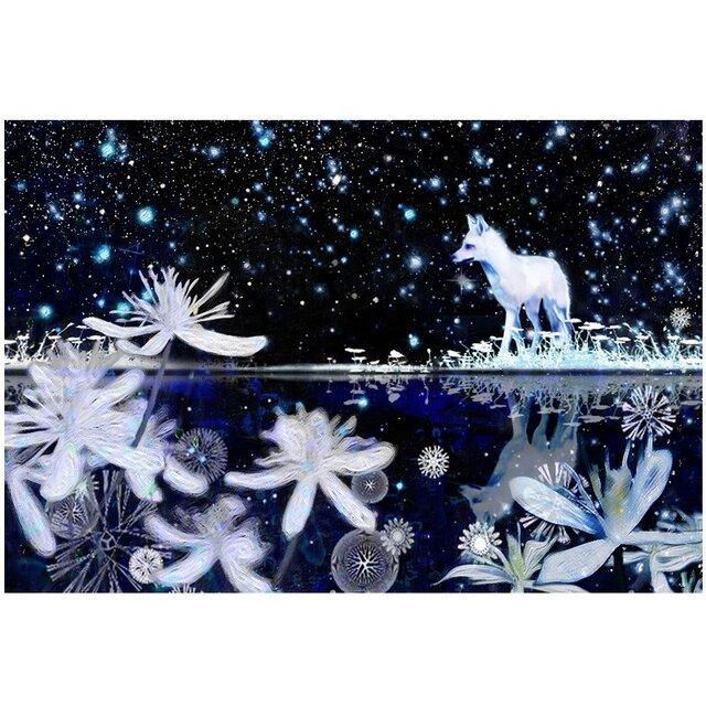 雪狐 2Lサイズ の画像1枚目