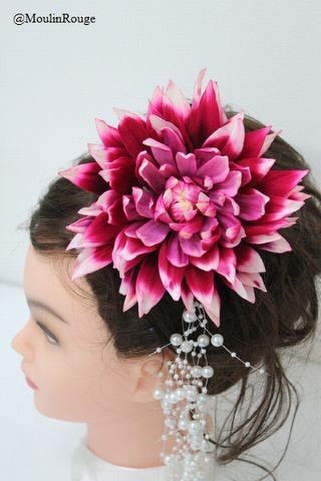 大輪グラデーション染めピンクダリアとパールの髪飾り【クリアケース付】の画像1枚目