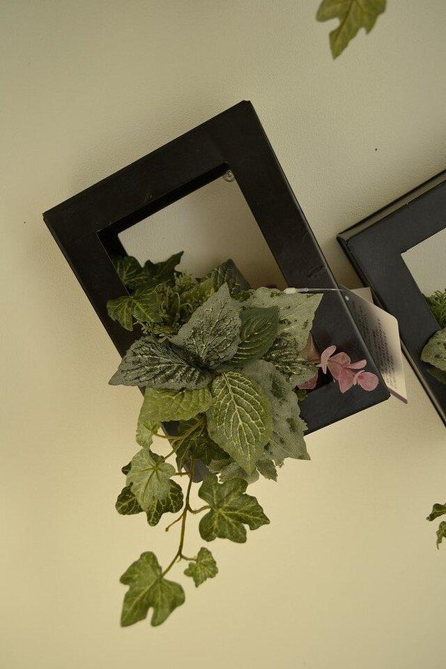 Interior green BKの画像1枚目