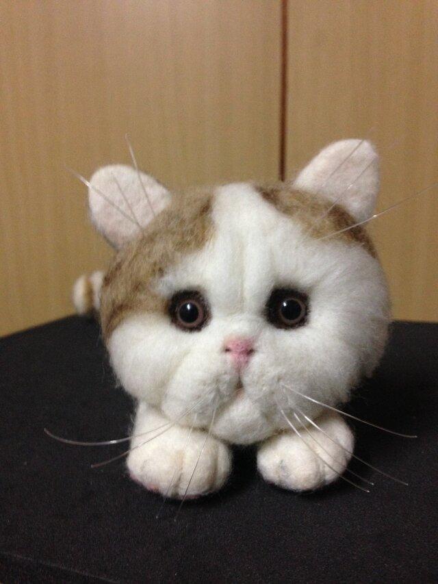 羊毛フェルト○猫(=^ェ^=)○の画像1枚目