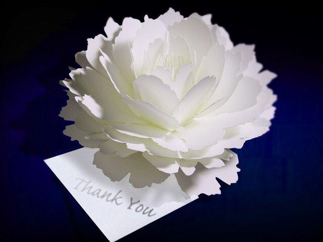 咲くようにひらく 花のサンキューカード〈ピオニー〉 forバースデー・ウェディング・アニバーサリー・クリスマス・メッセージカードの画像1枚目
