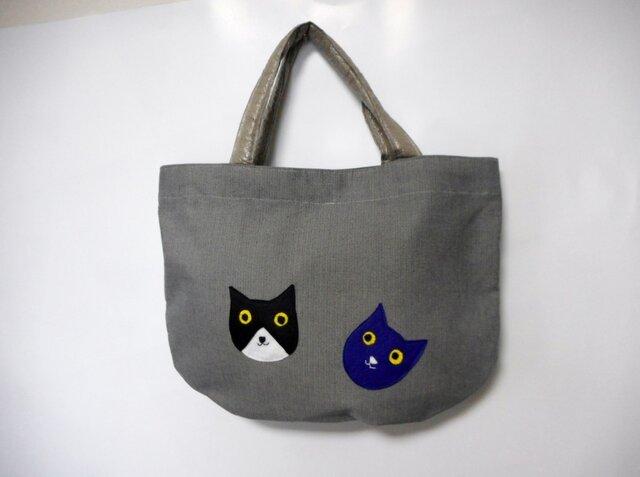 2匹の猫ちゃん グレーの画像1枚目