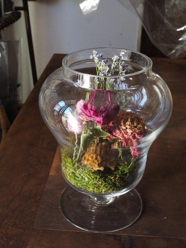 ガラス花器のテラリウム ピンクグラデーションの画像1枚目