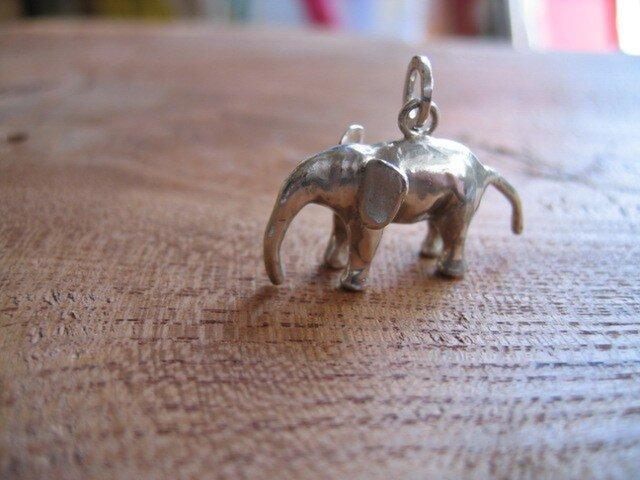 子ゾウの画像1枚目