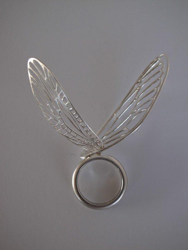 羽根のリングの画像1枚目