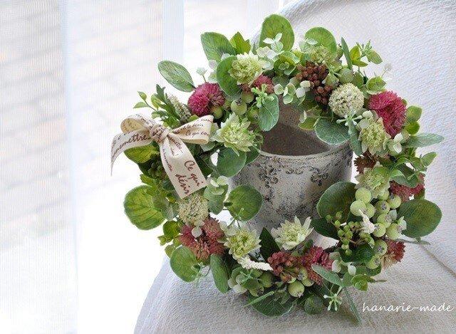 丸葉ユーカリにピンクをそえて:wreathの画像1枚目