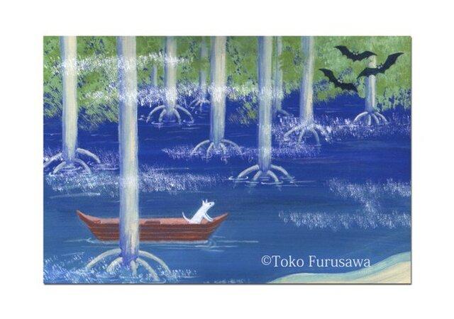 選べるポストカード(4枚)NO.5「マングローブの森を行く」の画像1枚目