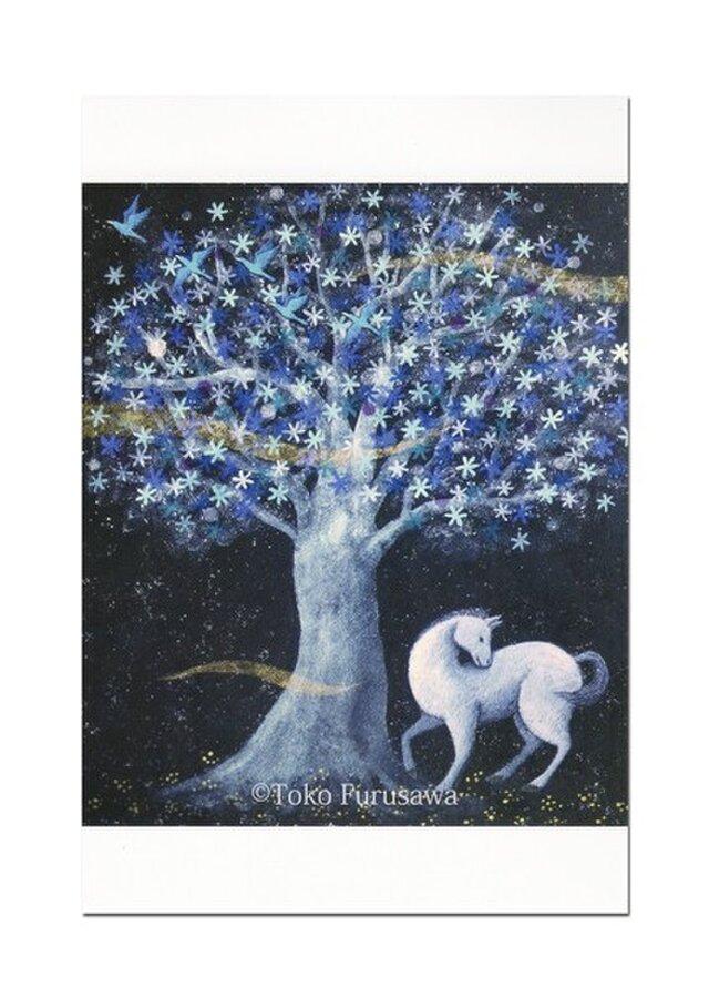 選べるポストカード(4枚)NO.9「蒼き花咲く樹の下で」の画像1枚目