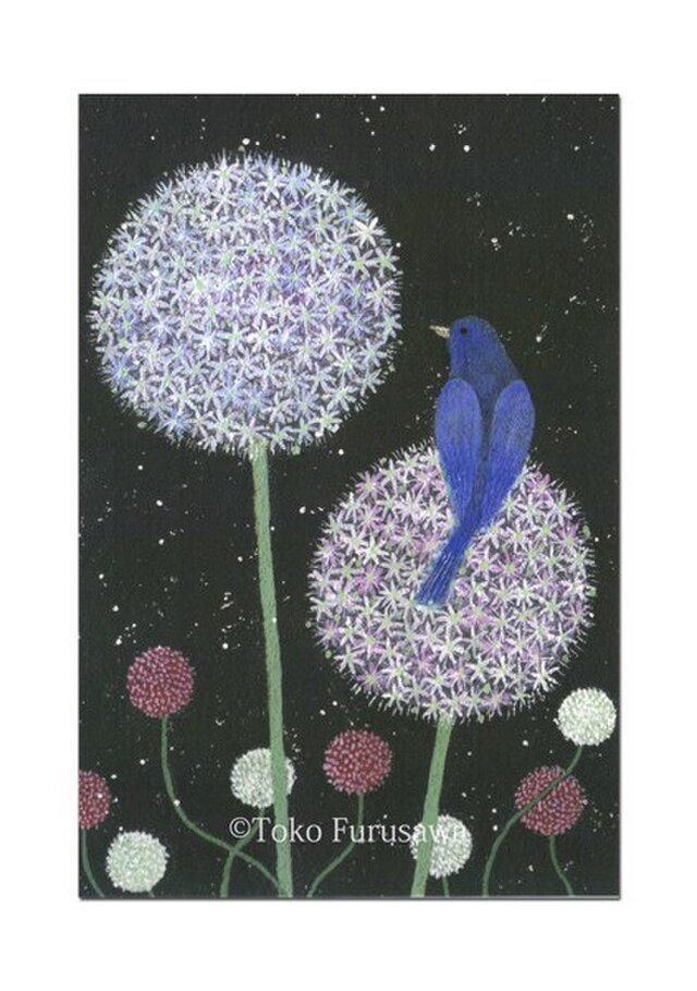 選べるポストカード(4枚)NO.10「アリアム・プラネット」の画像1枚目