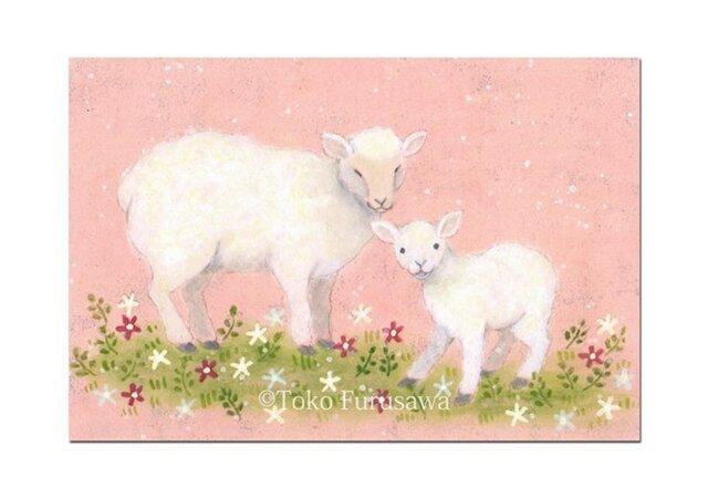 選べるポストカード(4枚)NO.11「春日和」の画像1枚目