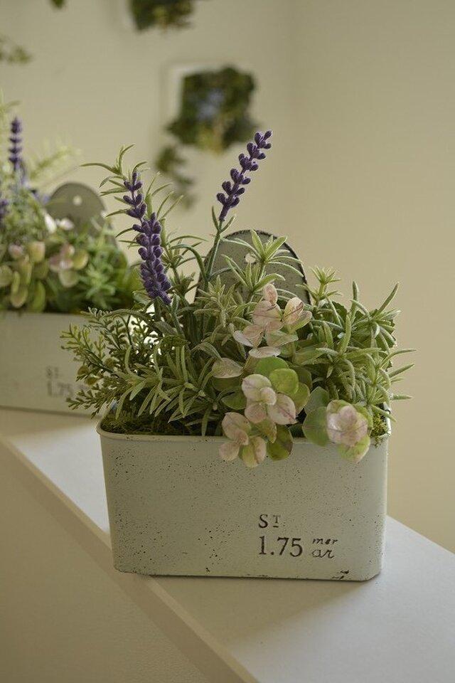 Bloomy Spring (W)の画像1枚目