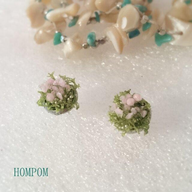 春・お花畑ピアス1 ホムポムの画像1枚目