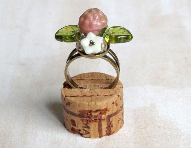 木苺の指輪 6の画像1枚目