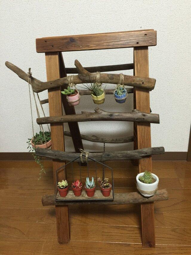 流木の脚立風ラック(ショップの商品を1万円以上お買い上げで折り鶴サービス中)の画像1枚目