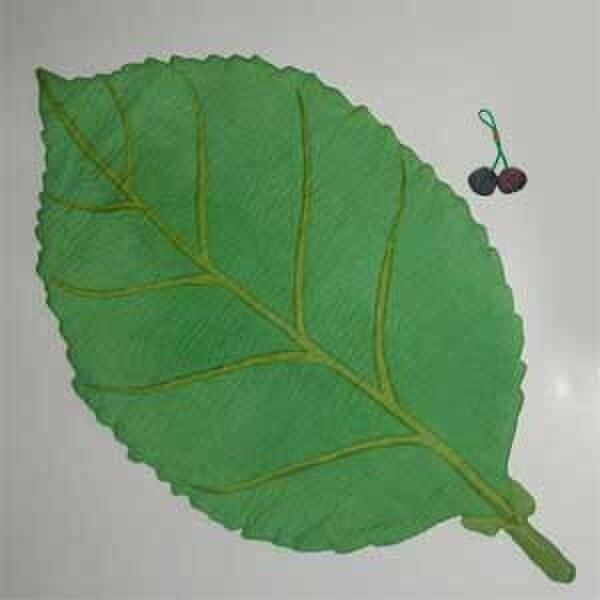 さくら葉(ランチョンマット)の画像1枚目