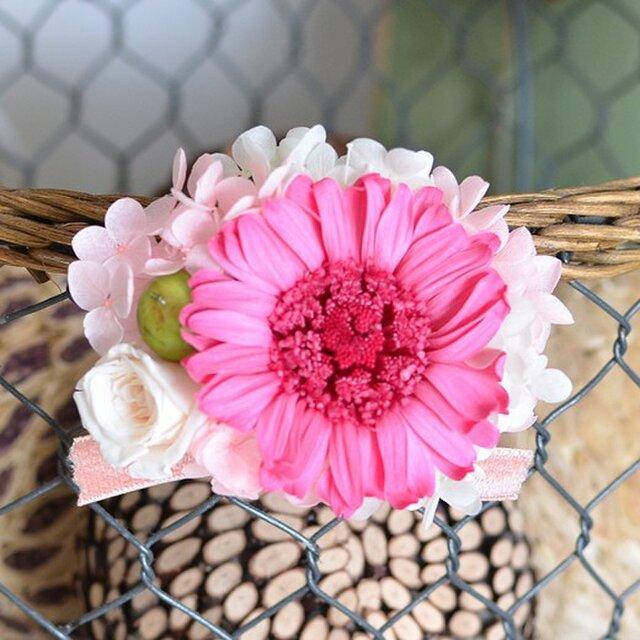 【ホワイトピンク】 プリザーブドフラワー コサージュ ガーベラ  発表会 結婚式 入学式 ヘッドドレス 七五三の画像1枚目