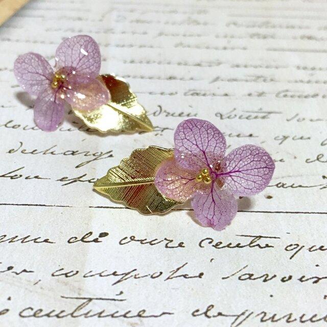 *ラベンダー*紫陽花とゴールドリーフピアスの画像1枚目