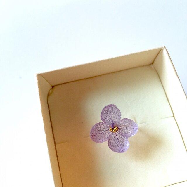 violet*紫陽花のスパイラルピンキーリングの画像1枚目
