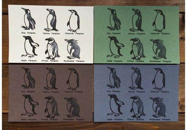 ペンギン6種ポストカードの画像1枚目