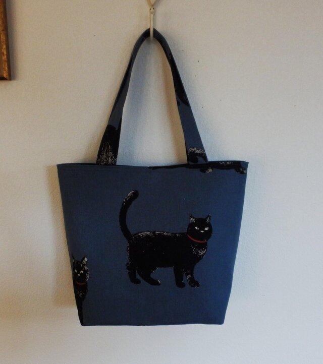 ブルーグレイの黒猫トートの画像1枚目