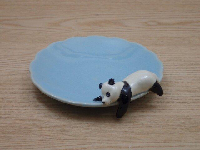 水青爆睡大熊猫輪花小皿−Pの画像1枚目
