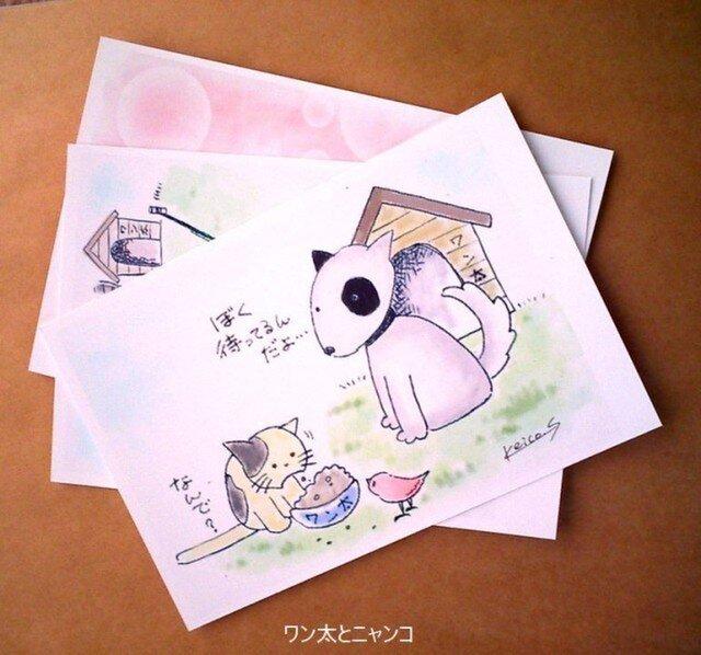 ポストカード(ワン太とニャンコ)の画像1枚目