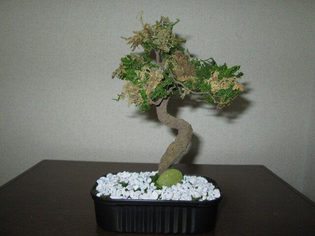 アートミニ盆栽 ★消臭効果あり★の画像1枚目