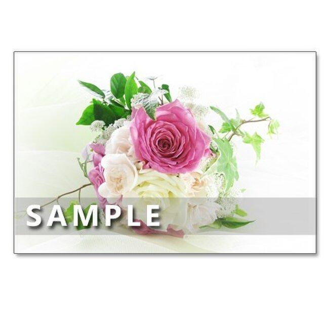 1079) ミントブッシュ(プロスタンセラ)、バラ、ガーベラ、ミモザのブーケ  5枚組ポストカードの画像1枚目