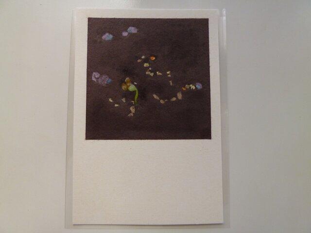 発芽(ポストカード)の画像1枚目
