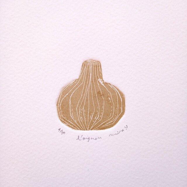 銅版画・玉葱の画像1枚目