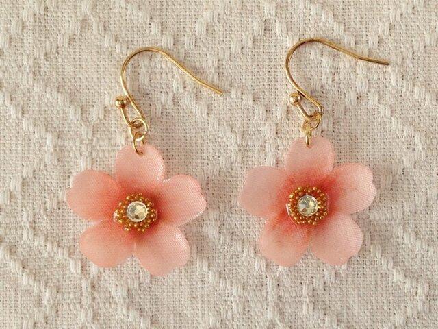 染め花を樹脂加工した桜のぶら下がりピアス(ピンク)の画像1枚目