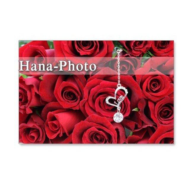 1080)ゴージャスなバラのブーケ  ポストカード5枚組 の画像1枚目