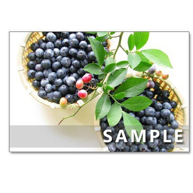 1081)美味しいブルーベリー   ポストカード5枚組の画像1枚目