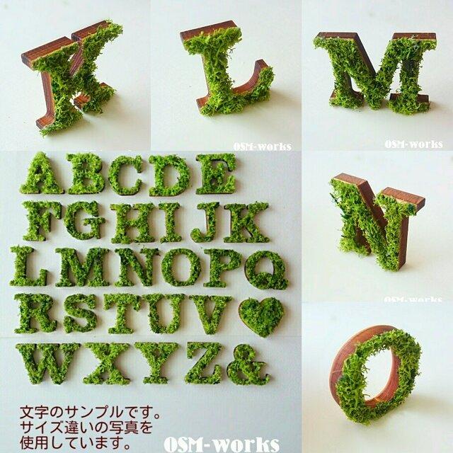 木製オブジェ(モス)Lサイズ(18.5cm)×1点「K・L・M・N・O」の画像1枚目