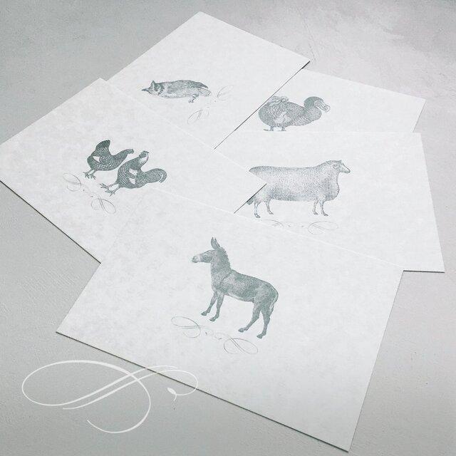 のどかな森の動物達 ポストカード セットの画像1枚目