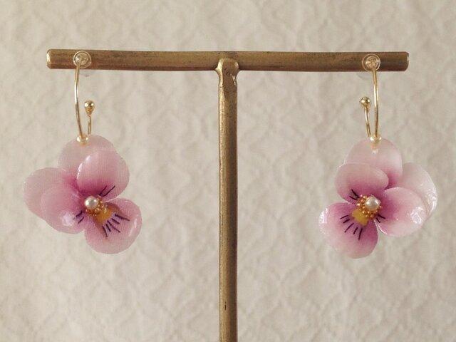 染め花を樹脂加工したビオラのフープピアス(SS・ピンク)の画像1枚目