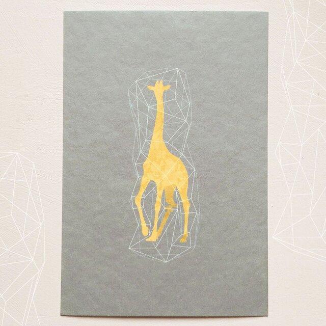 キリンのポストカード(3枚入り)の画像1枚目