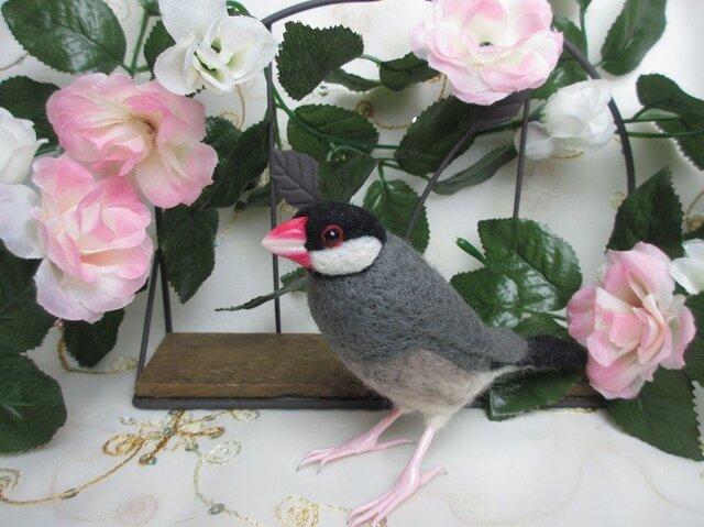 羊毛フェルト ノーマル文鳥の画像1枚目
