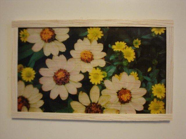 Flowerの画像1枚目