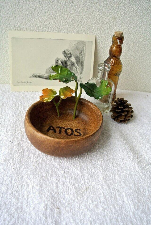 ATOSシリーズ 森の始まりプレート① 2016の画像1枚目