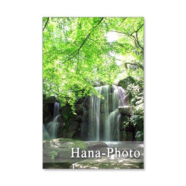 1091) 美しい新緑と水の風景   ポストカード5枚組の画像1枚目