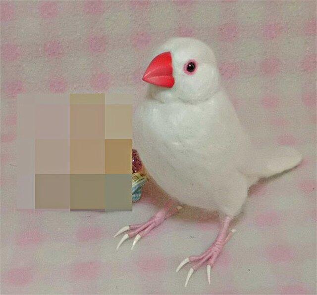 リアルサイズ♪ 白文鳥 羊毛フェルト☆クチバシの色相談可能 ♪の画像1枚目