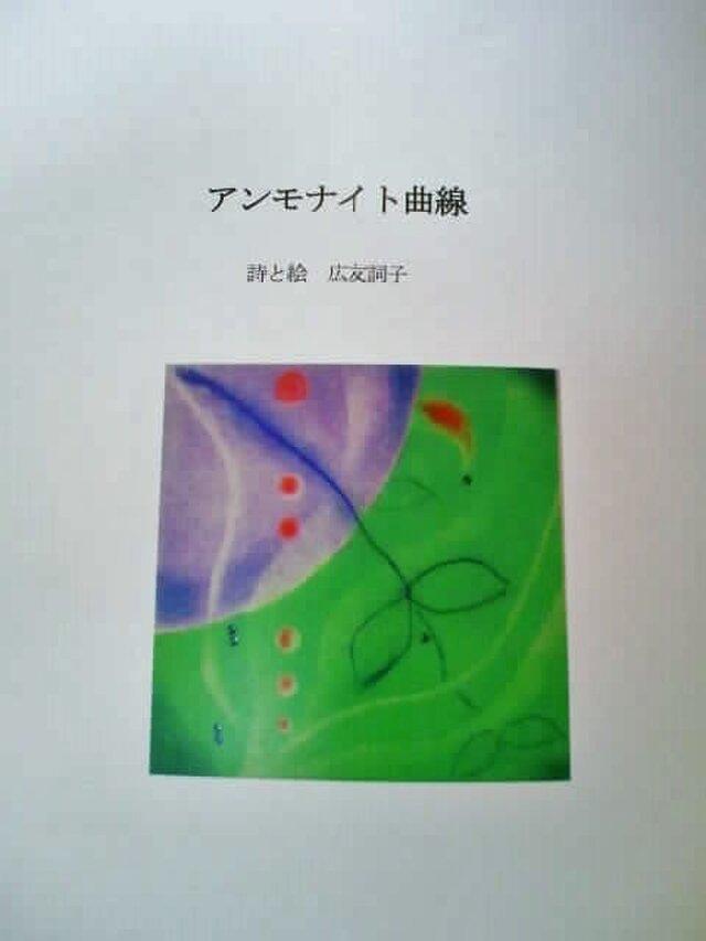 詩集『アンモナイト曲線』の画像1枚目