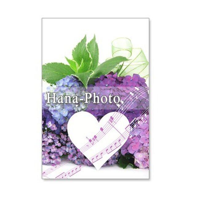 1096) 紫陽花 赤、水色 ピンク アレンジなど  ポストカード5枚組 の画像1枚目