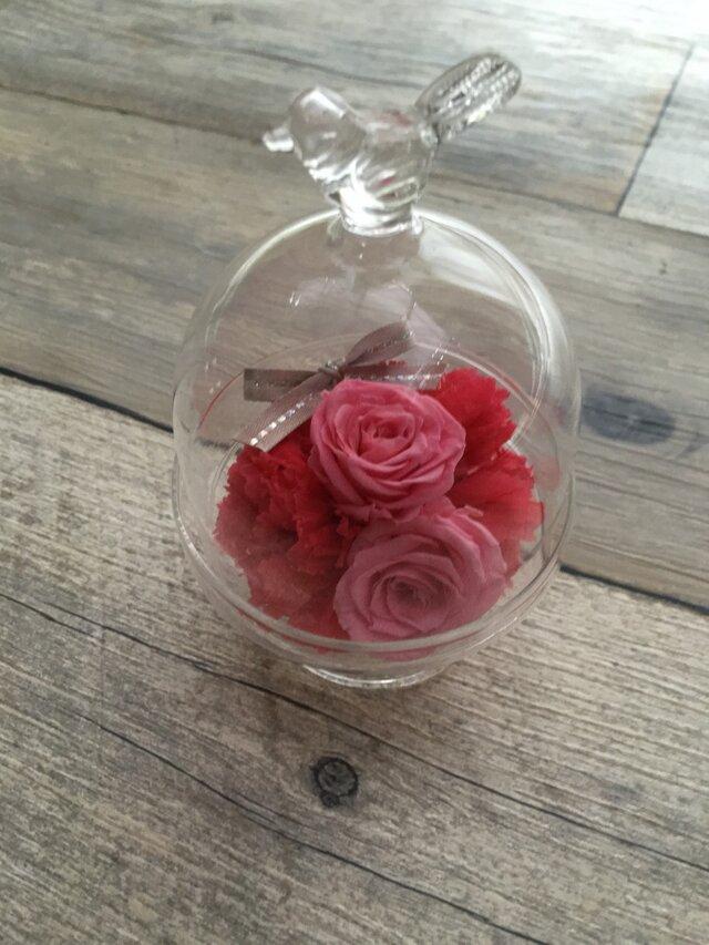 小鳥のガラスドーム Pinkの画像1枚目