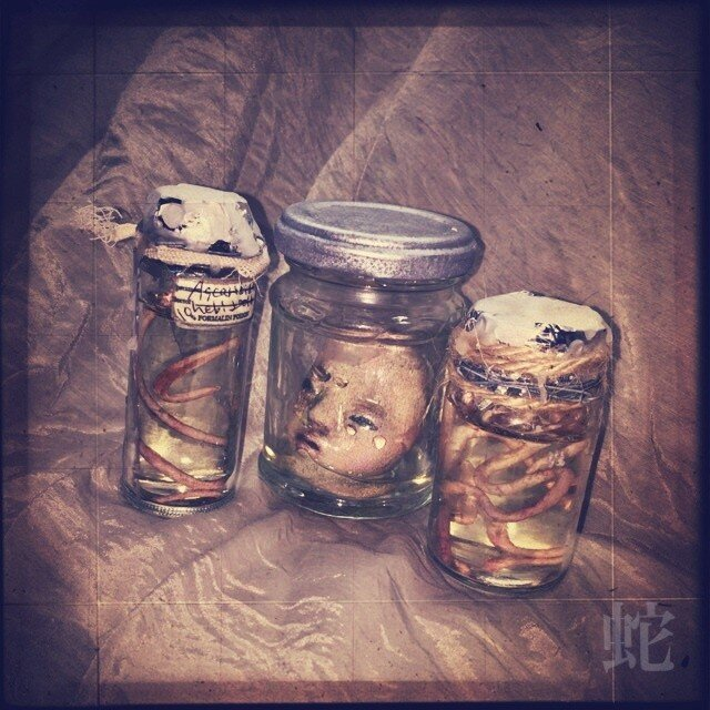 寄生虫標本瓶セットの画像1枚目