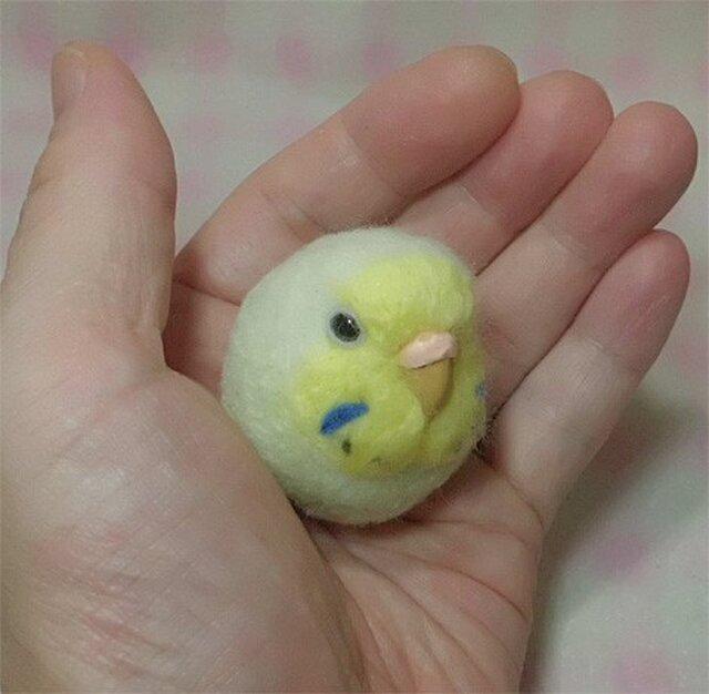 ☆選べる2タイプ☆ コロコロ♪ 羊毛の小鳥  セキセイ レインボー パステルグリーン☆選べる鼻の色の画像1枚目